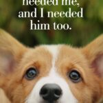 A Dog's Purpose Book Quotes With Page Numbers Pinterest