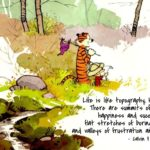 Calvin And Hobbes Life Quotes Pinterest