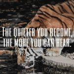 Caption On Tiger