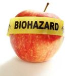 Could GMO Foods Possibly End Our Lives? Yes OR No?