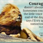 Cute Lion Quotes