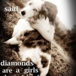 Dog Girl Quotes