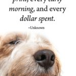 Dog Paws Quotes Pinterest
