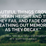 F Scott Fitzgerald Beautiful And Damned Quotes Facebook
