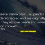 Famous Bamboo Quotes Twitter