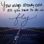 Flight Attendant Graduation Quotes Twitter