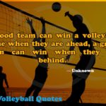 Good Volleyball Quotes