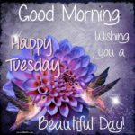 Happy Tuesday Morning Wishes Pinterest