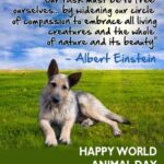 Happy World Animal Day Quotes Twitter