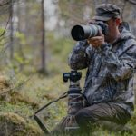 Hunting with a camera:tips to take your wildlife photography