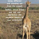 Inspirational Giraffe Quotes Twitter