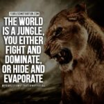 King Of The Jungle Quotes Twitter
