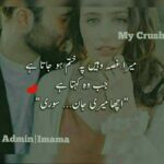 Love Romantic Quotes In Urdu Twitter