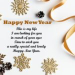 My New Year Wish For You Poem
