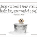 Pet Grooming Quotes Twitter