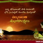 Pongal Wishes In Telugu Twitter