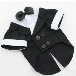 Dog Clothes: Puppy & Dog Outfits & Apparel