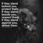 Quotes About Wolves And Strength Twitter