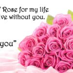 Rose Day Sweet Lines Pinterest