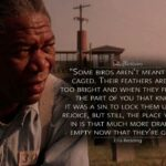 Shawshank Redemption Quotes Red Twitter