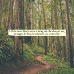 Short Hippie Quotes