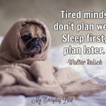 Sleeping Dog Quotes Twitter