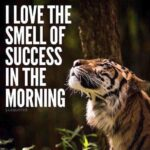 Smell Of Success Quotes Facebook