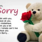 Sorry Sms For Friend