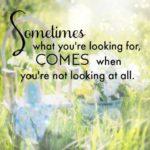 Soul Sensations Quotes