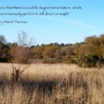 Thoreau Quotes Nature Pinterest