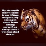 Tiger Quotes Tumblr