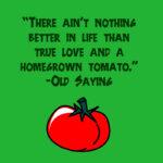 Tomato Quotes Pinterest
