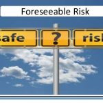 Duty of Care and Travel Risk Management: Travel Risk Management and Foreseeable Risk