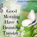 Tuesday Good Morning Inspirational Quotes