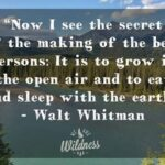 Walt Whitman Nature Quotes Facebook